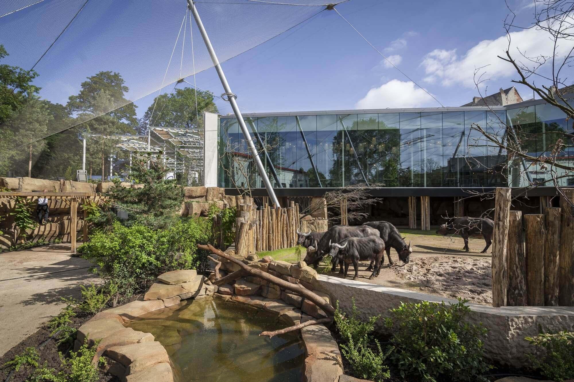 promo Zoo Antwerpen