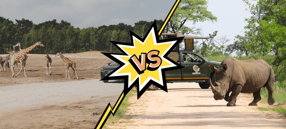 safaripark beekse bergen versus krugerpark zuid-afrika