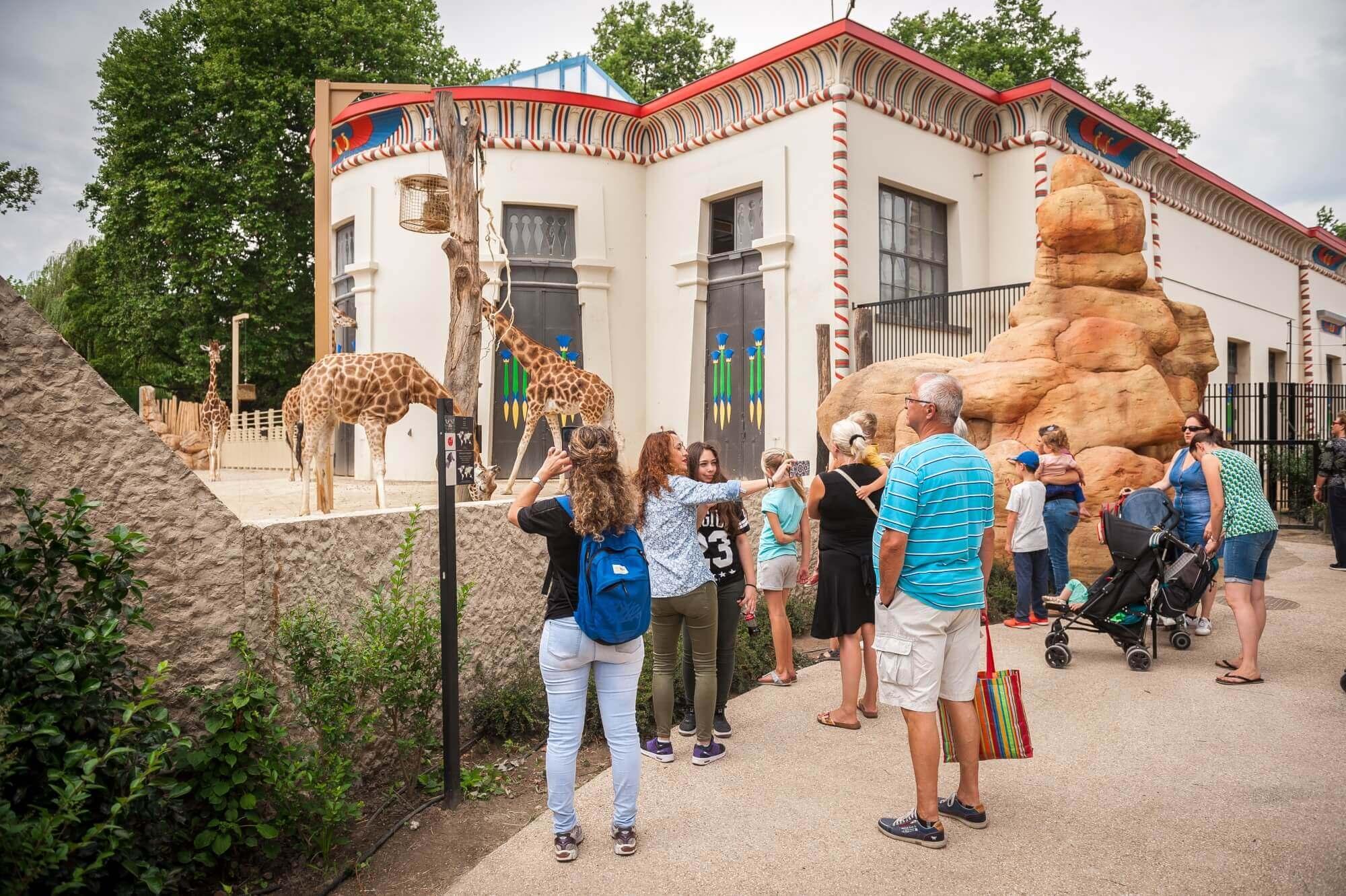 foto Zoo Antwerpen